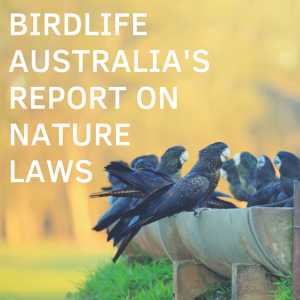 BirdLife Australia Restoring the Balance report