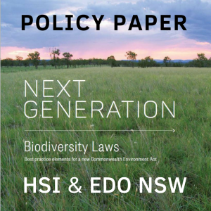 HSI policy paper cover